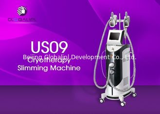 China 40 KHz Cryolipolysis Machine With 2 Freeze Handles Easy Operation supplier